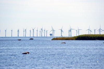 /offshorewind.jpg