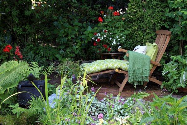 Vilstol i grönskande liten trädgård
