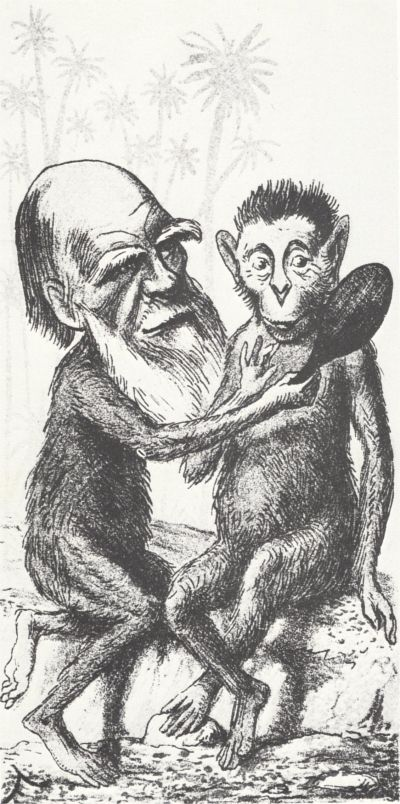 darwin-monkey-1.jpg