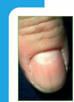 nagel15 43
