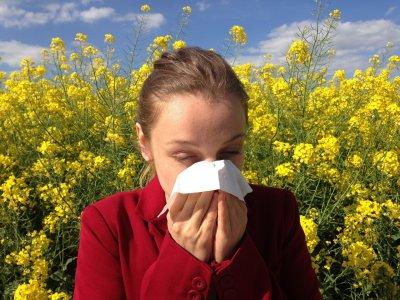 /allergy-1738191_1920.jpg
