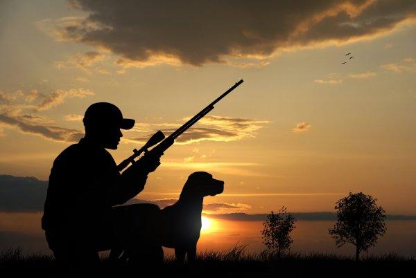 jakt i solouppgång