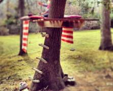 Een boomhut in het bos bouwen
