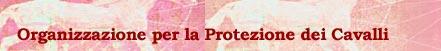 ILPH: lega internazionale per la protezione dei cavalli