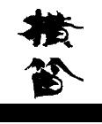 [長野県] 伊東酒造