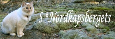 nordkapsbergets-lank.jpg