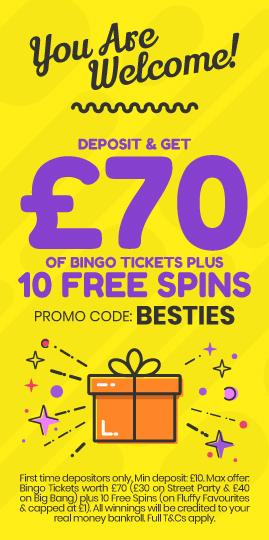 Bingo   Online Free Spins