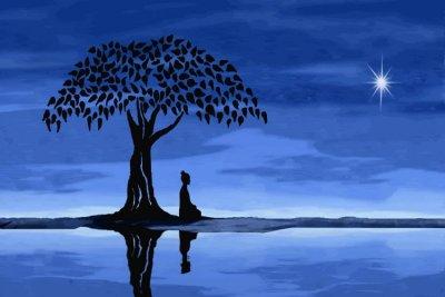 /meditating-under-tree.jpg