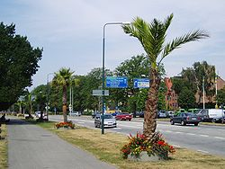 250px-trelleborg-palmen.jpg