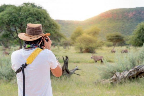 Man fotograferar vilda djur