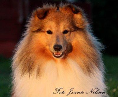 foto-jennie-nilsson-17.jpg