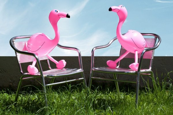 /flamingo-i-tradgarden.jpg