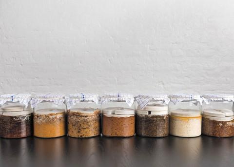 Batteri gourmet e cucina fermentata: l'arte di René Redzepi