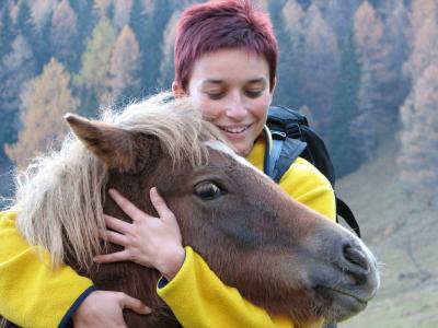 istock-1410932xsmall-pony.jpg