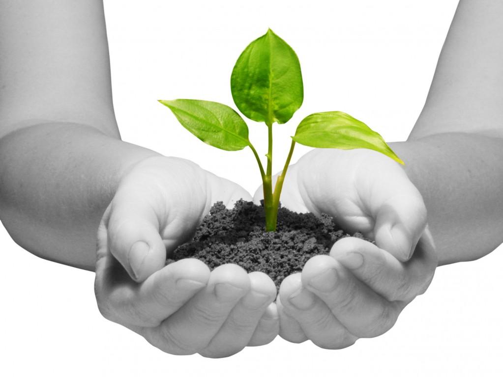 Vill du få ditt företag att växa?