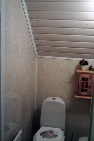 Våtrumspanel, med betsat tak av stockpanel, i liten toalett