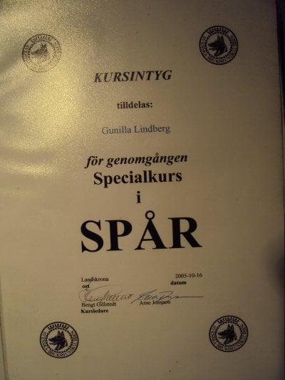 sbk-specialkurs-i-spar.jpg