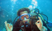 anse-caraibes-plongee