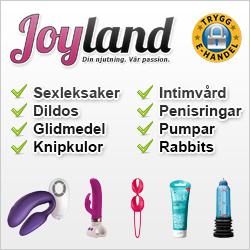 Sexbutiken Joyland