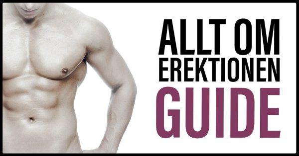 Guide Erektion och Erektionsproblem.