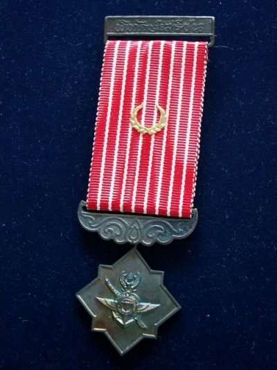 /freemen-safeguard-medal-i-class-olive-branches.jpg
