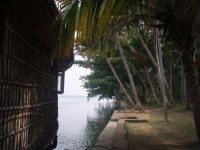 backwaters.jpg