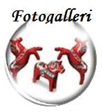globfotogalleri.png