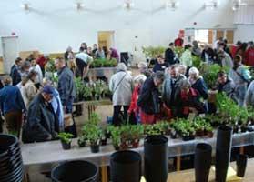 Växtmarknad i Gamlestadens medborgarhus