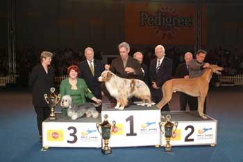 Il primo Dandie sul podio di un Best in Show Mondiale!