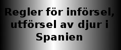 /inforselutforsel-av-djur-i-spanien.jpg