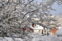 /vinter-5.jpg