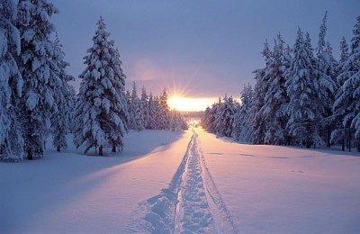 /vinterbild.jpg