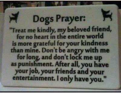 dogs-prayer.jpg