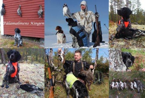 /kingen-jaktbilder.jpg