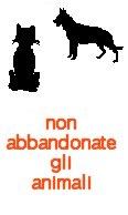 CHI ABBANDONA GLI ANIMALI NON E' AMICO DI TORINOTES!
