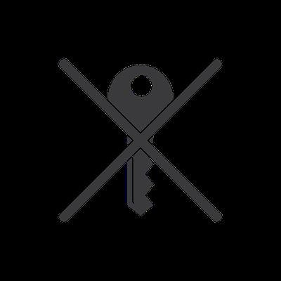 No key Forgot key-icon