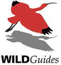 WILDGuides