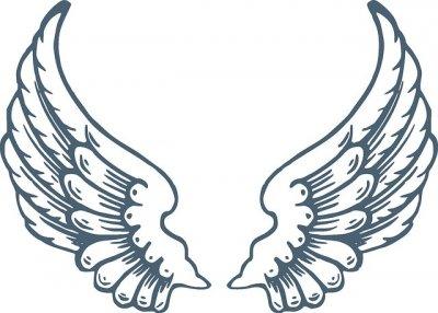 /wings-305329_640.jpg