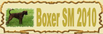 mini-boxer-sm.jpg