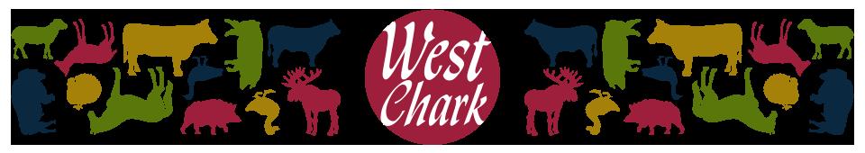 stor logo