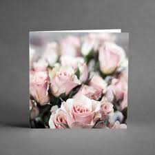 /rosa-spegelrosor.jpg