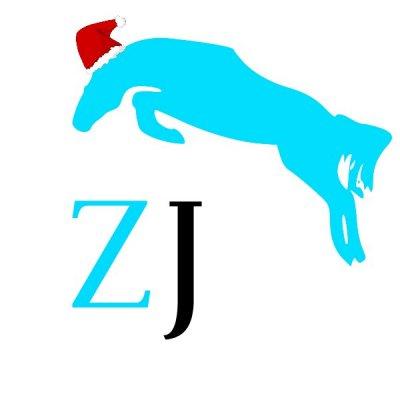 /zorrojumps-liten-logga-jul.jpg