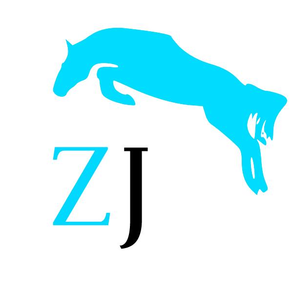 /zorrojumps-liten-logga.jpg